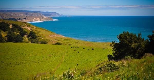Chile Farmland