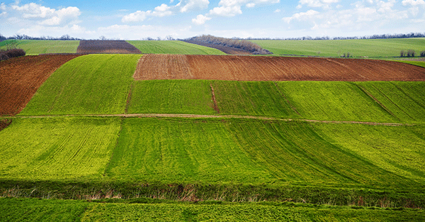 The us is losing 9 5 acres of farmland per minute for How big is america